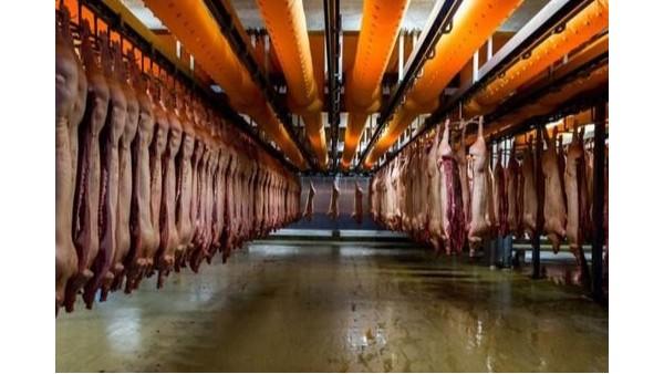 阴离子聚丙烯酰胺处理肉类加工污水